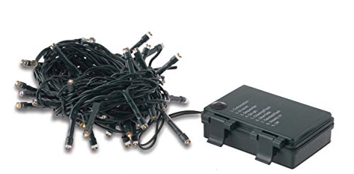 60LED Akku Lichterkette mit Controller Spiel Lichter/Timer/-Ladegerät IP44-Ideal für Weihnachtsbäume, Krippen, Blumenarrangements, Außenbereich Wo ist nicht erhältlich eine Buchse LED BIANCO CALDO