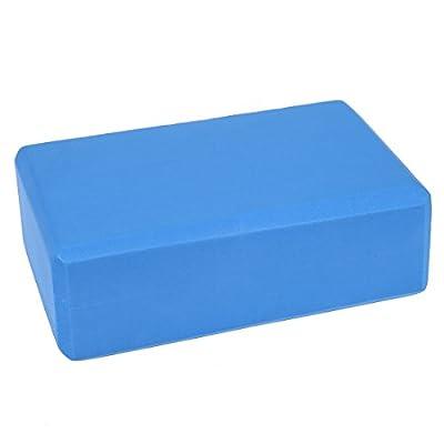 "TOOGOO(R) 9"" x 6"" x 3"" Yoga-Block Ziegel Hauptuebungs-Werkzeug (blau)"