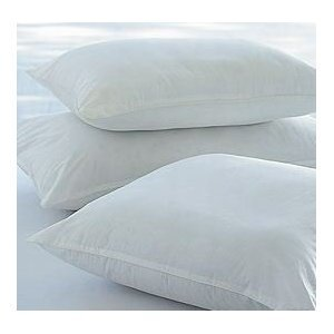 """Pack Of 2 - 45 x 45 cm, 18"""" x 18"""" Non Allergenic Cushion Inners"""