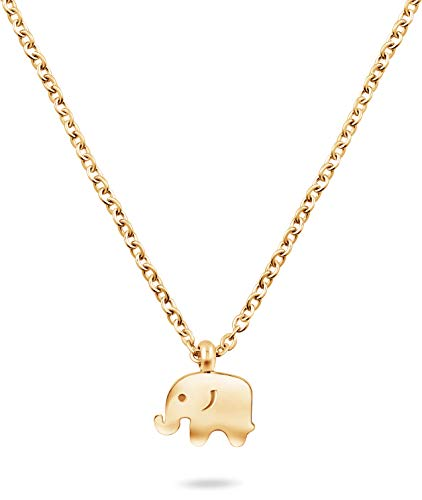 Nuoli® Elefanten Kette Damen Gold (45 cm) Glücksbringer Halskette für Frauen (Gold Afrika-karte Anhänger)