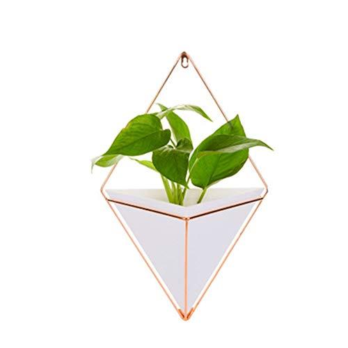 Watooma Trigg Vase & Décoration Géométrique – Pot pour...
