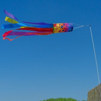CIM Windsack - Stockwindsack BUTTERFLY - UV-beständig und wetterfest - Abmessungen: 45x15cm - inkl. Fiberglasstab und Wirbelkarabiner