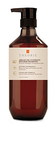 Theorie Argan Oil Ultimate Reform Shampoo, 800ml by Theorie