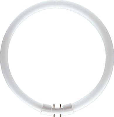 Philips Master tl5C/840–4000K, color blanco frío