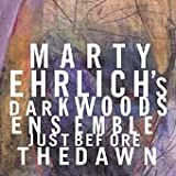 Marty Ehrlich`S Dark Woods Ensemble :
