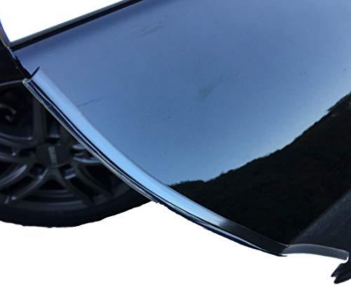 220cm Türschutz Profil/Türkantenschoner - Schutzleiste für Auto PKW KFZ Türen - Lack & Dellenschutz für Autotür - Durchsichtig & Selbstklebend