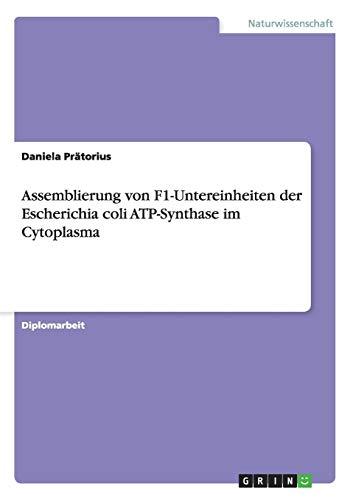 Assemblierung von F1-Untereinheiten der Escherichia coli ATP-Synthase im Cytoplasma