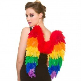 Feather Angel Wings Gay Pride/ Carnival Fancy Dress Accessory (Gay Pride Kostüme)