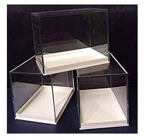 Große Schauboxen aus Plexiglas, für Proben, ideal für Fossilien, Meteoriten, Druckgießen, Münzen etc., 12 Stück (Acryl-box)