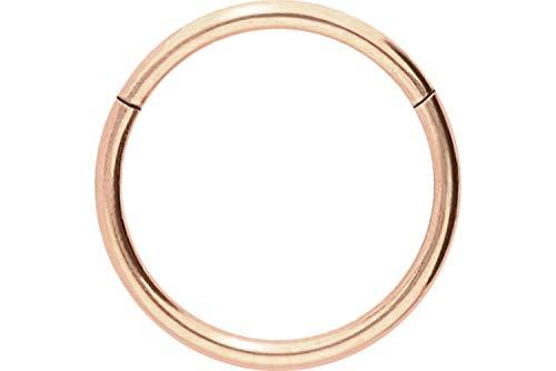 PIERCINGLINE Chirurgenstahl Segmentring Clicker | Piercing ✔ Ring ✔ Septum ✔ Helix ✔ Tragus ✔ | Farb & Größenauswahl -