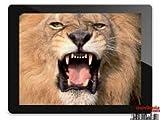 Nevir TAB8 S1 8GB Negro, Color blanco - Tablet (Amlogic, AML8726-MX, ARM Cortex-A9, DDR3-SDRAM, MicroSD (TransFlash), Flash)