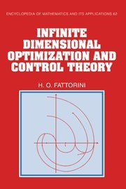 Infinite Dimensional Optimization and Control Theory Hardback (Encyclopedia of Mathematics and its Applications)