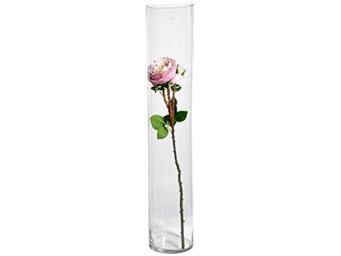 H&H durchsichtige Vase cm15xh80 Möbel Glas zylindrisch und