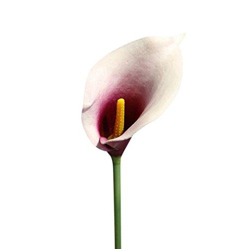 5 Stücke Calla Kunstblume Deko,SuperSU Künstliche Blumen Kunstpflanze Blumenstrauß Milchweiß...