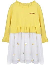 Robe Fille, Filles Enfants Automne Hiver À Manches Longues Tricots Broderie  d ananas Tulle f2e0963493f