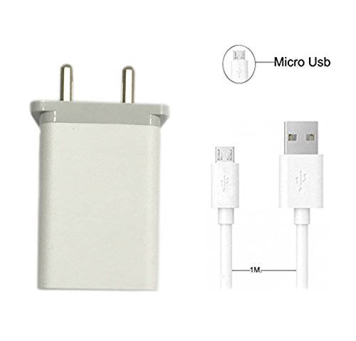Pacificdeals 2 Amp Charger with USB Cable - White