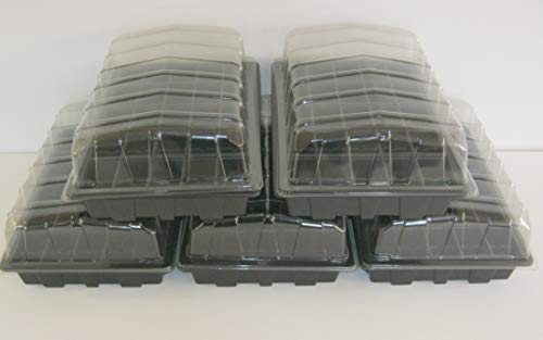 Volle Größe Zimmergewächshaus Sets (5x Deckel, 5x Tabletts ohne ablauflöcher, 5x 50-cell fügt)