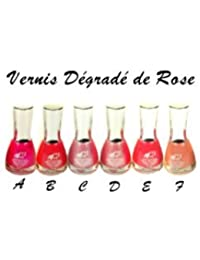 1 VERNIS DEGRADE DE ROSE 16 ML 6 COULEURS MAQUILLAGE ONGLE BEAUTE