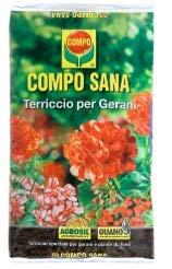 Compo Sana Terreau de qualité 'spécifique pour la culture des géraniums en lot de 80 Lt