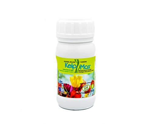 KELPMAX® (450 m2. Algae&Vitamine; Einzigartiger konzentrierter Dünger, potenter und natürlicher Biostimulant und Pflanzenaktivator, verbessert Qualität und Produktion; ökologisch. -