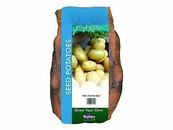 Image of Taylors 2kg Maris Bard First Early Seed Potatoes