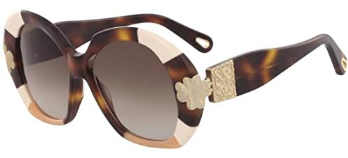 Chloé Sonnenbrillen Venus CE743S Dark Havana/Brown Shaded Damenbrillen