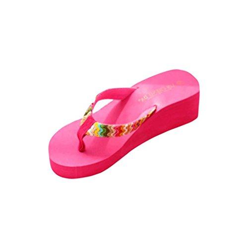 Damen Sommer Schuhe,Xinan Sommer-Plattform-Sandelholz-Strand Flache Keil Patch-Flip-Flops Lady Slippers (38, Hot Pink ) (Womens Casual-schuhe Größe 10)