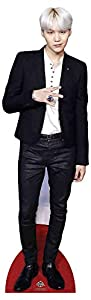 Star Cutouts CS902 BTS Bangtan Boys Min_Yoon_gi_Suga (Star Mini) 90 cm de alto, multicolor