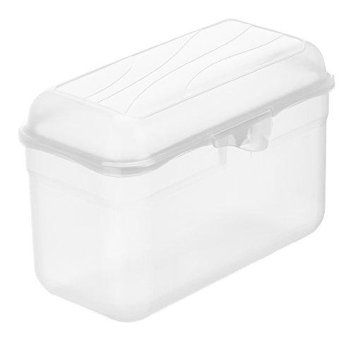 Rotho 1718800096 Funbox Vesperdose Brotbox Knäckebrotbox, BPA- und schadstofffrei, hergestellt in der Schweiz; ca. 19.5 x 10.5 x 12.5 cm, transparent
