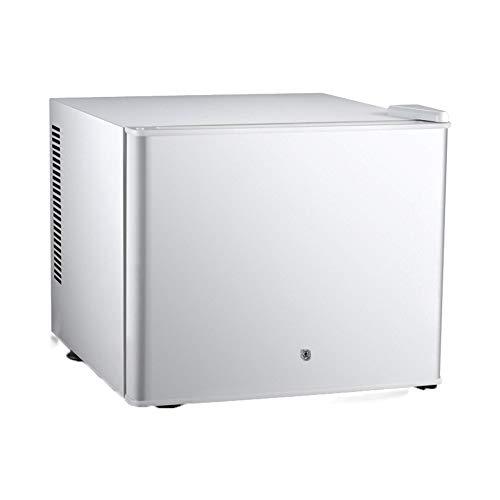 Mini Refrigerador PequeñO Gabinete De Medicina Refrigerado