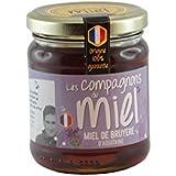Les Compagnons du Miel - Miel de Bruyère d'Aquitaine - Pot verre 250g - Liquide