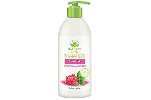 Awapuhi Ginger + Holy Basil Volumizing Shampoo Nature's Gate 18 oz Liquid