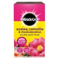 Miracle-Gro Azalea, Camellia & Rhododendron Soluble Plant Food 1 kg