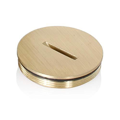 Leviton 25249-cap Ersatz Schraubdeckel mit O-Ring für Duplex Boden Box, Messing mit Clear Coating -