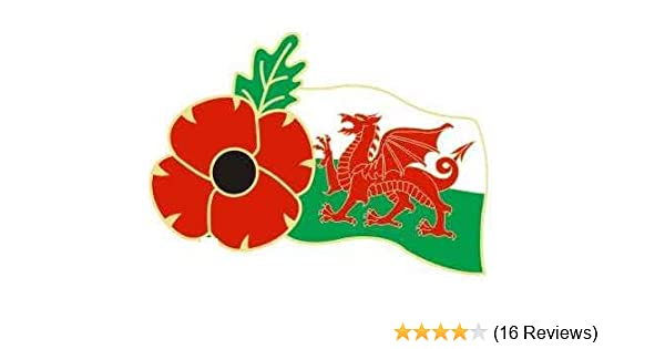UK Wales Welsh Red Dragon Flag Soldier Veteran Military Enamel Pin Badge Brooch