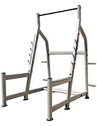 Jaula sentadillas profesional AX 8830 (pierna y pecho)