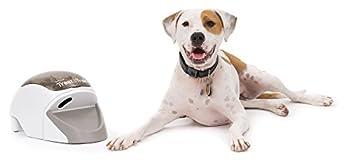 PetSafe - Système de Dressage pour Chien Treat & Train, idéal Agility, Distributeur de Nourriture à Distance - Dressage Positif pour Tous Types de Chiens