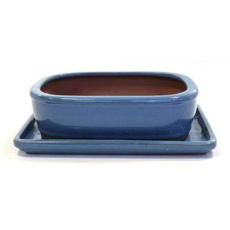 Tiesto Basic rectangular de canto redondo azul claro + plato 20 cm