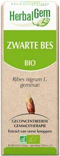 Herbalgem - Gemmothérapie Cassis (Ribes Nigrum Gemnae) 50Ml (Bio)