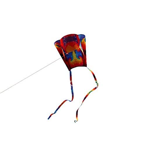 Hffan Premium Einleiner Drachen für Kinder ab 3 Jahren - 52*63cm - Beeindruckender Rainbow Kite mit Schweif Kinder bunte Mini Pocket Kite Outdoor Fun Sport Software Drachenfliegen (🌴🌴Mehrfarbig B, 52*63cm)