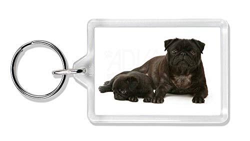 Advanta - Keyrings Mops Hund und Welpen Foto Schlüsselbund TierstrumpffüllerGeschenk - Mops-fotos