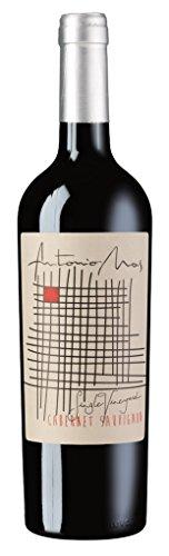 Bodega Sumun - Antonio Mas Cabernet Sauvignon Rotwein Argentinien 14,5% Vol. - 0,75l