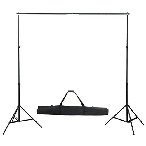 vidaXL Support de Fond pour Studio Photo 3 m sans Toile Photographie Vidéo