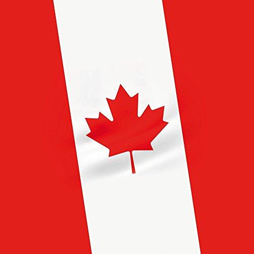 Apple iPhone 4 Housse Étui Silicone Coque Protection Canada Drapeau Canada Étui en cuir marron