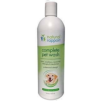 Natural Rapport Pet Shampoo & Conditioner for Dogs-Complete Pet Wash for All Breeds, 16 oz. 31dfg9HfP9L
