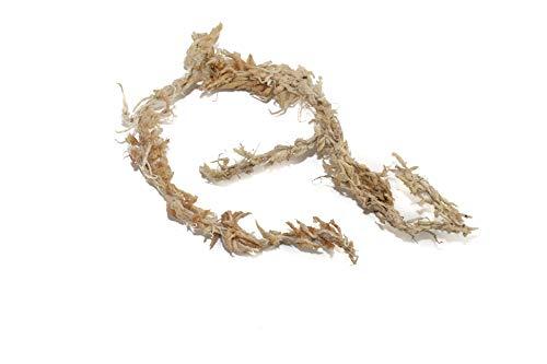 Sphagnum Moos Aus Chile 5000g
