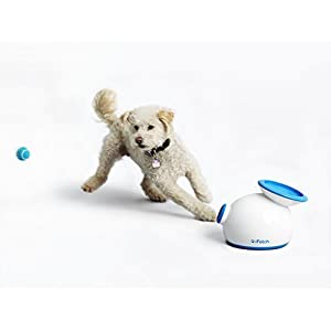 iFetch (Small) Interactive Ball Thrower for Dogs- Launches Mini Tennis Balls by iFetch 3