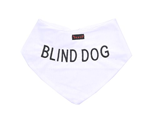 BLIND DOG White...