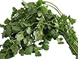 Obst & Gemüse Bio Koriander ca. 30g (6 x 1 Stk)
