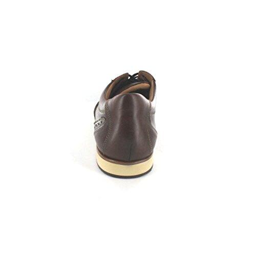LLOYD AMARILLO 1502217 hommes Chaussures à lacets Marron